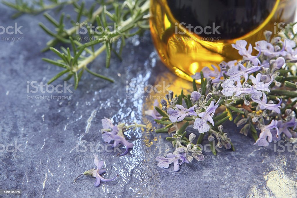 Rosemary and Olive Oil royalty-free stock photo