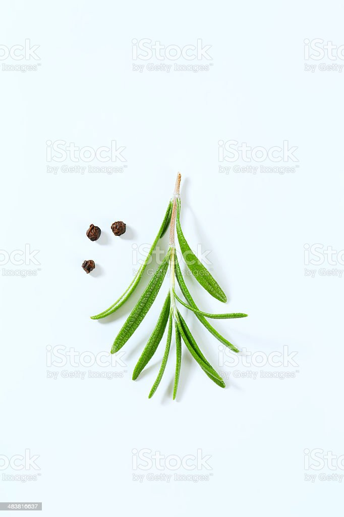 rosemary and peppercorns royalty-free stock photo
