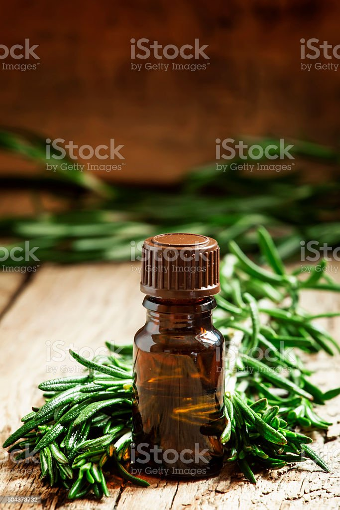Rosemary essential oil in a small bottle and fresh rosemary stock photo