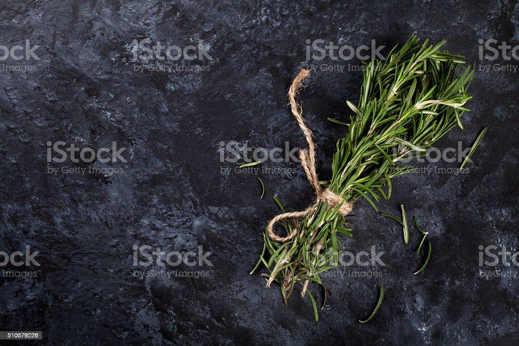 Rosemary herb stock photo