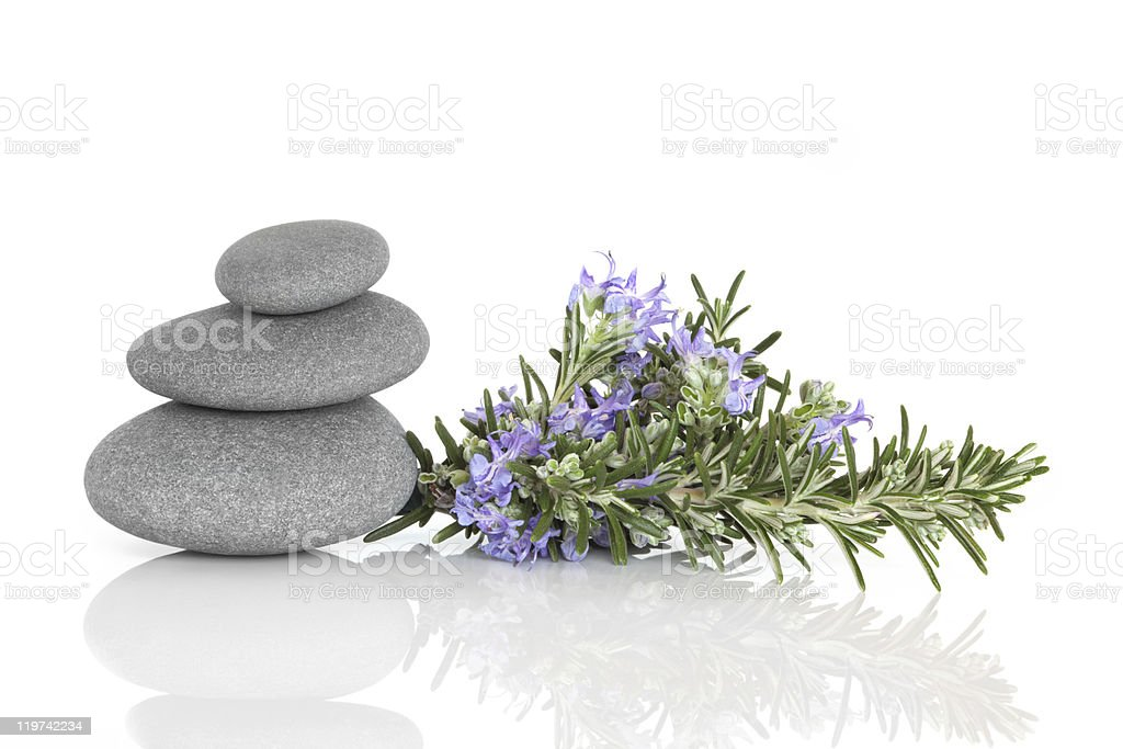 Rosemary Herbal Therapy royalty-free stock photo