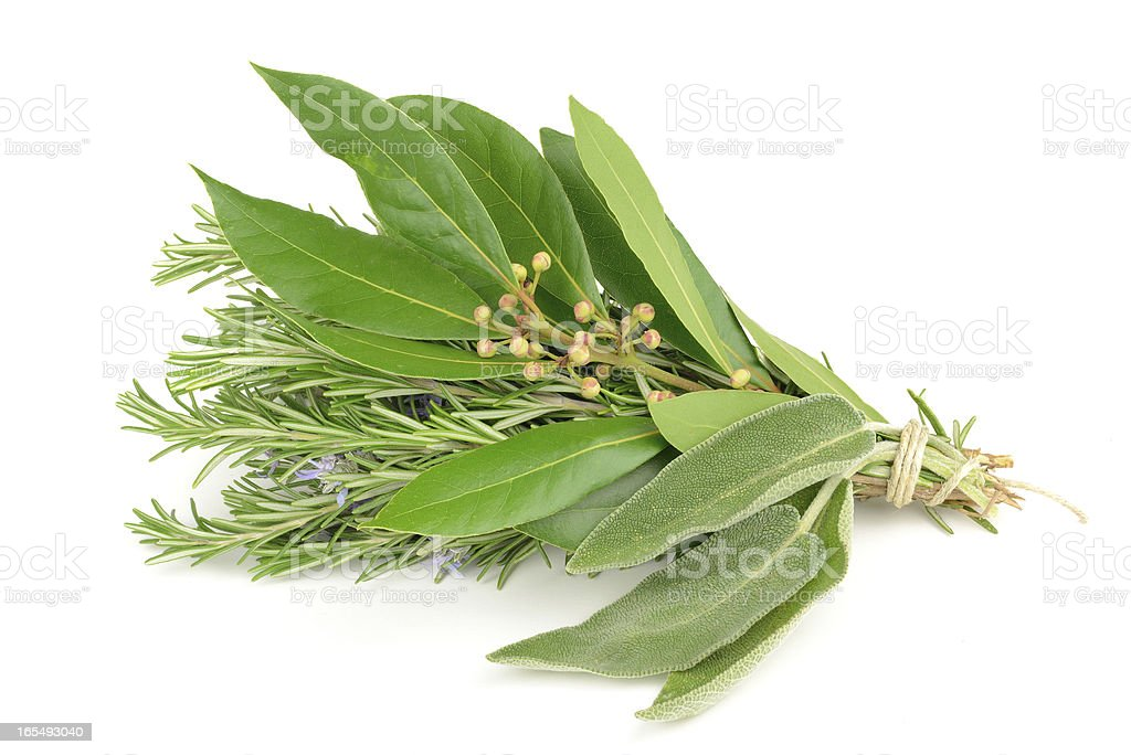 Rosemary, laurel and sage royalty-free stock photo