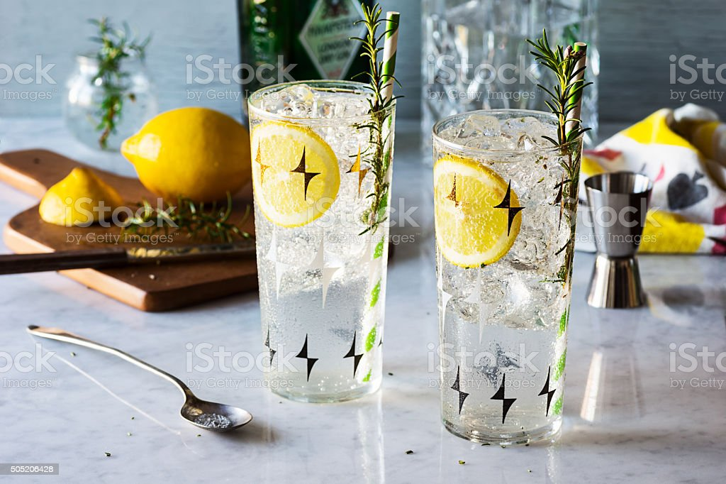 Rosemary Lemon Gin Fizz Alcoholic Cocktail with Ingredients stock photo