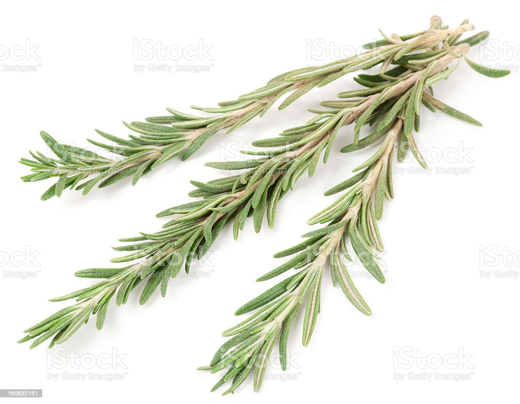 Rosemary on white surface royalty-free stock photo