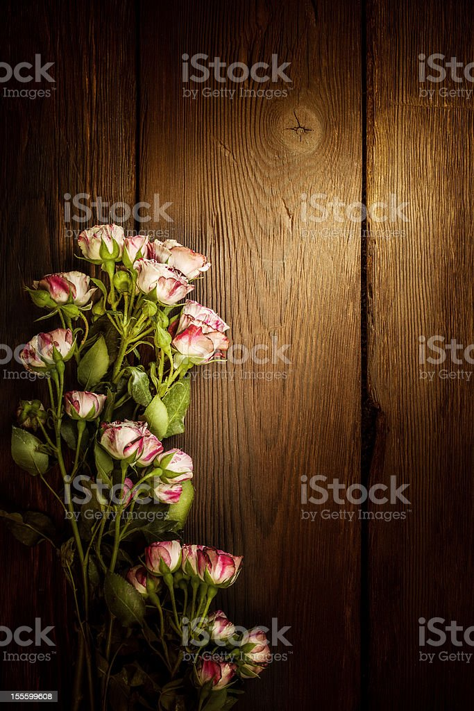Roses against aged wooden wall royalty-free stock photo