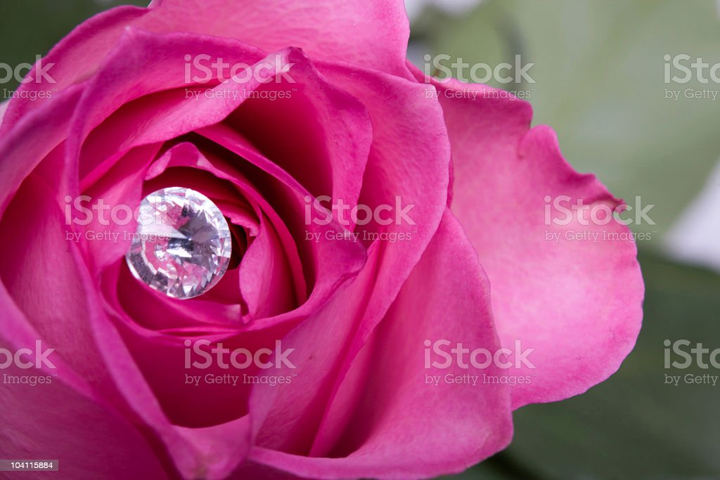 Roses and Diamonds stock photo