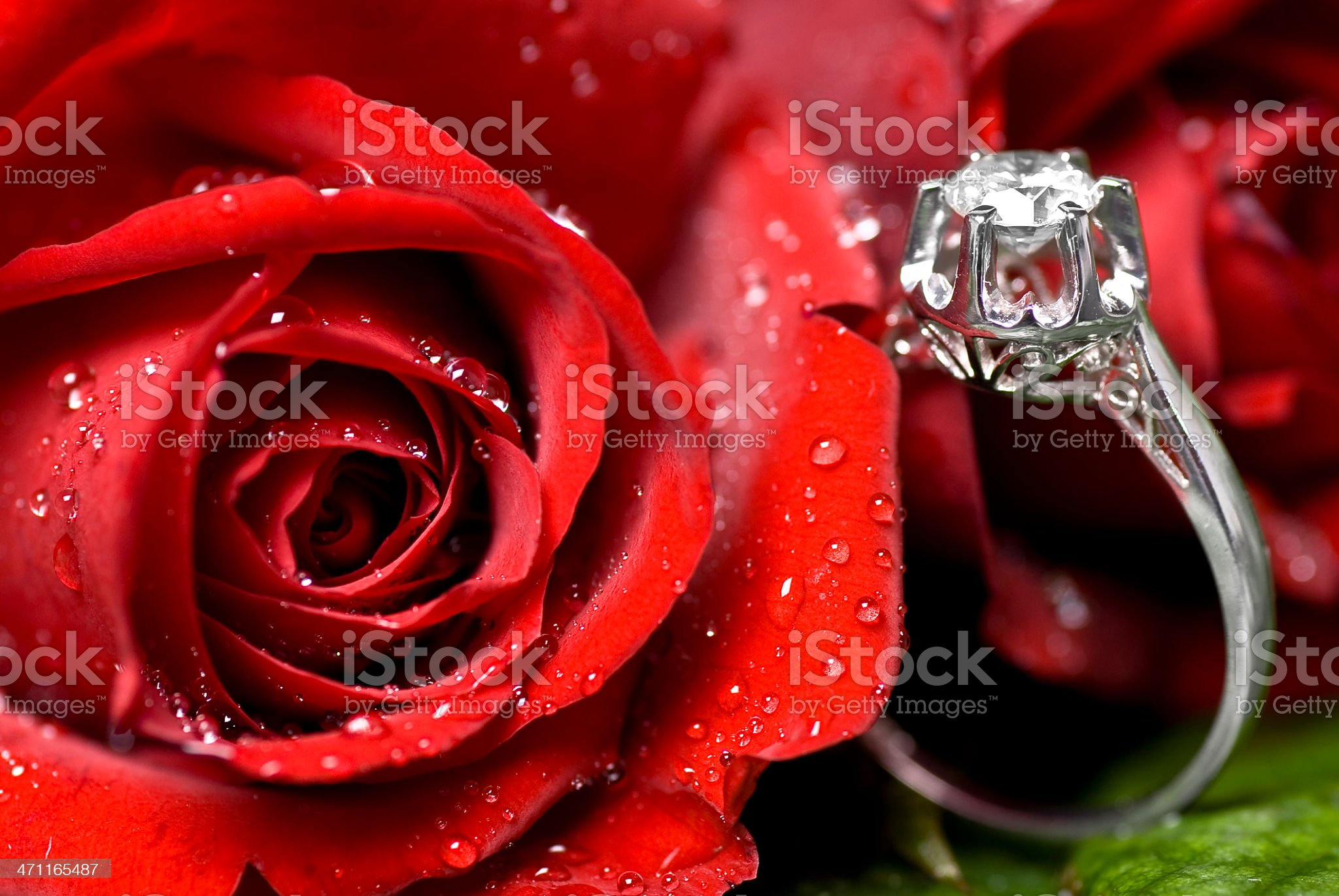 Roses and Diamonds royalty-free stock photo