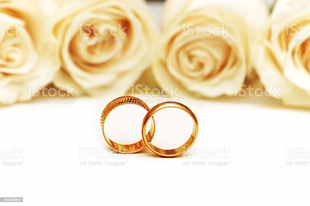 Roses and wedding rings isolated on the white royalty-free stock photo