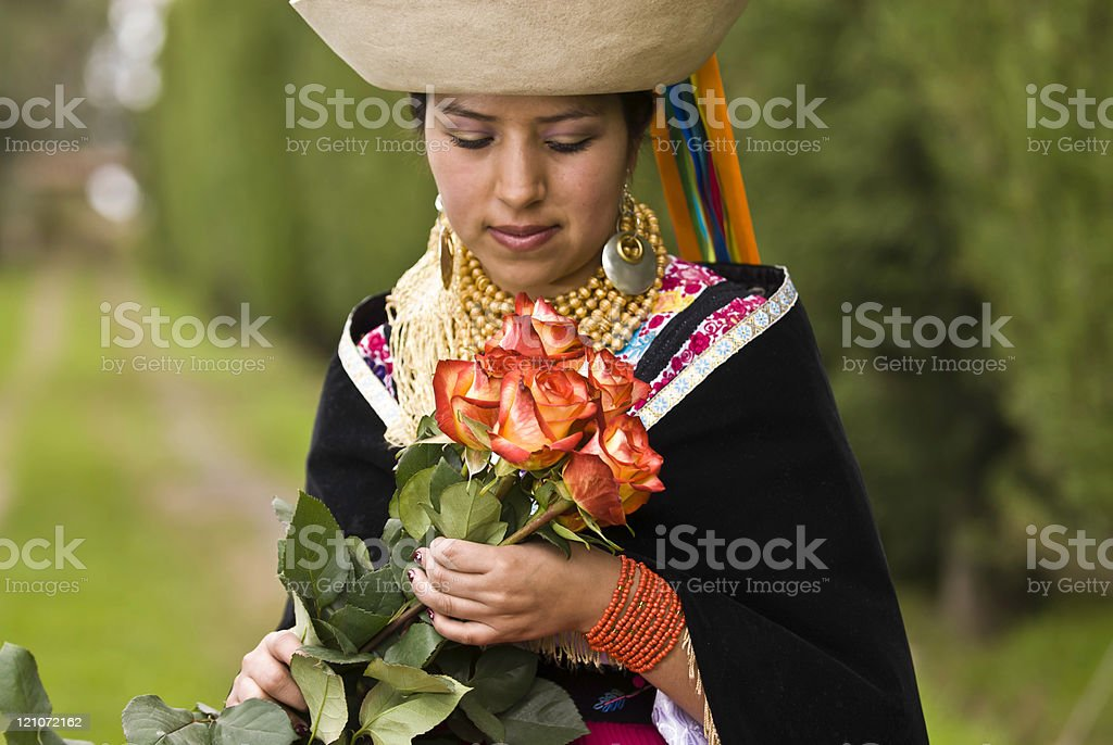 Roses andean Flowers stock photo