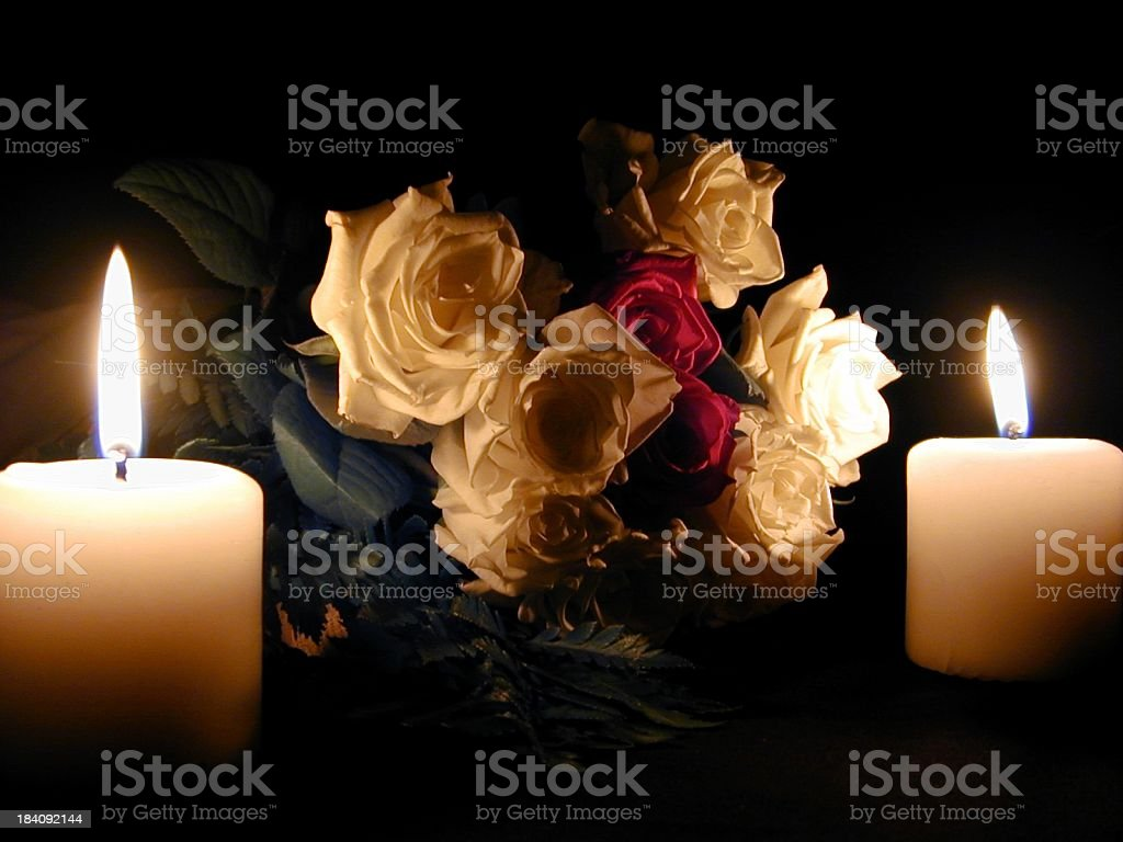 Roses by Fire royalty-free stock photo