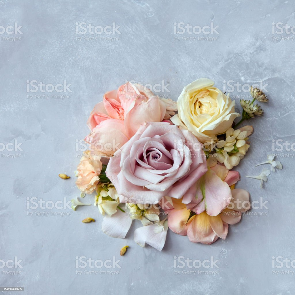 roses flowers in vintage color style stock photo