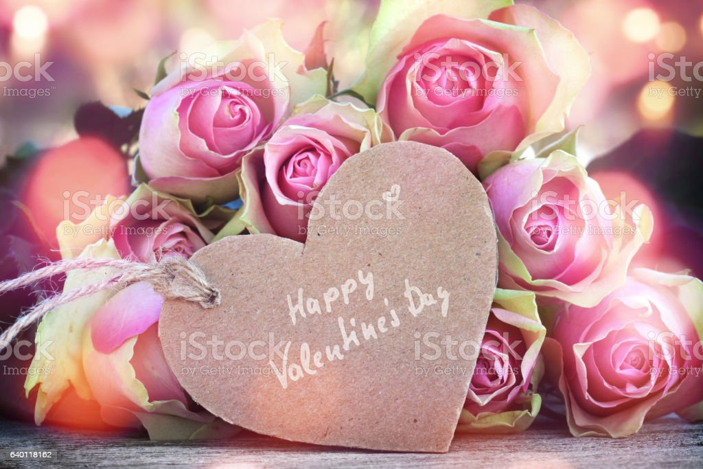Roses for Valentines Day stock photo