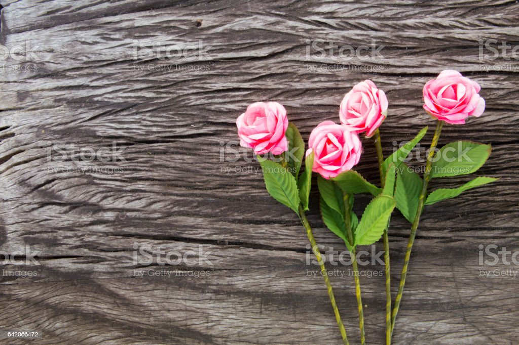 roses from cocoon on wood. stock photo