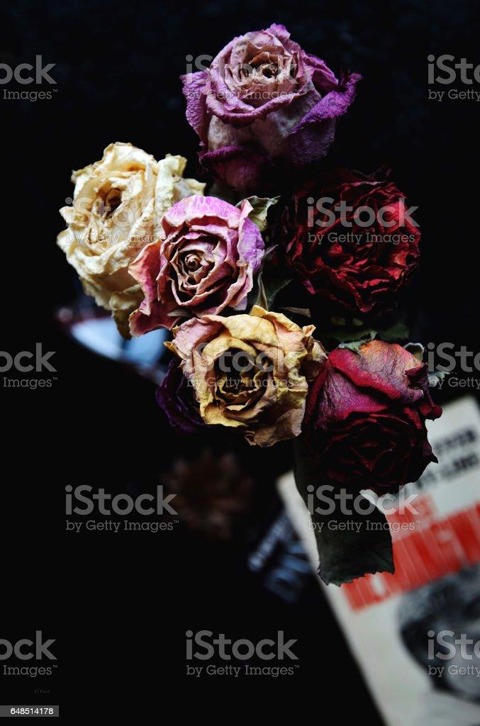Roses garland stock photo