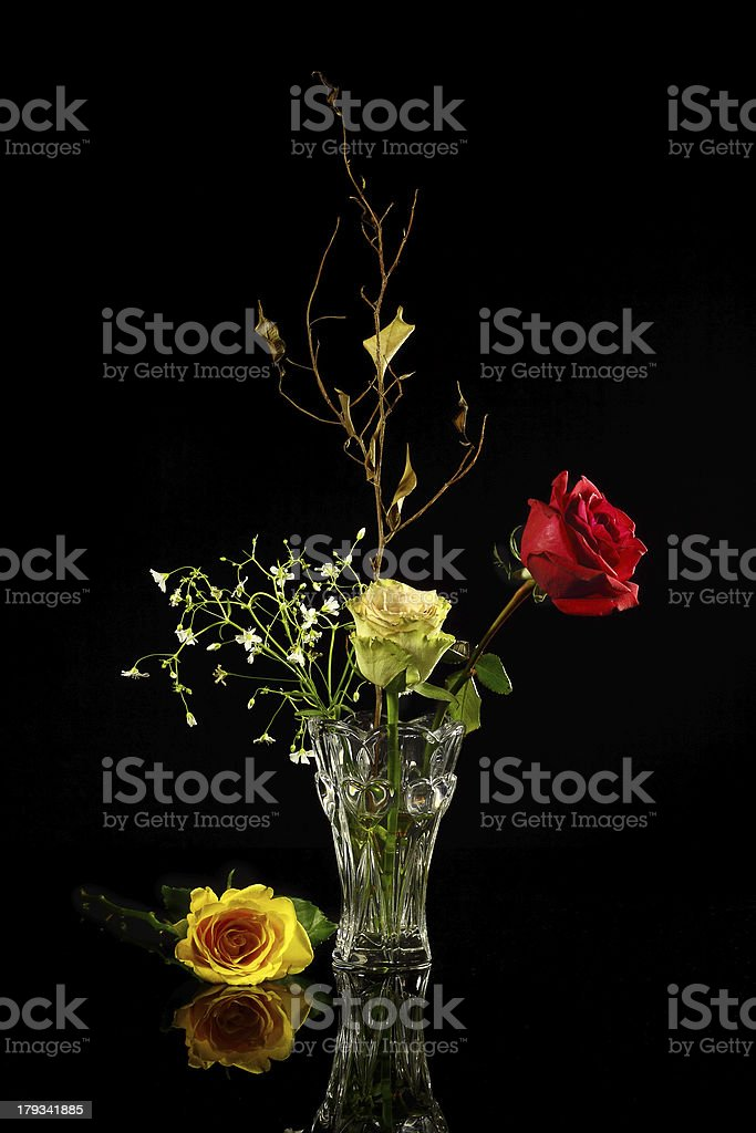 Roses in a vase on reflecting surface royalty-free stock photo