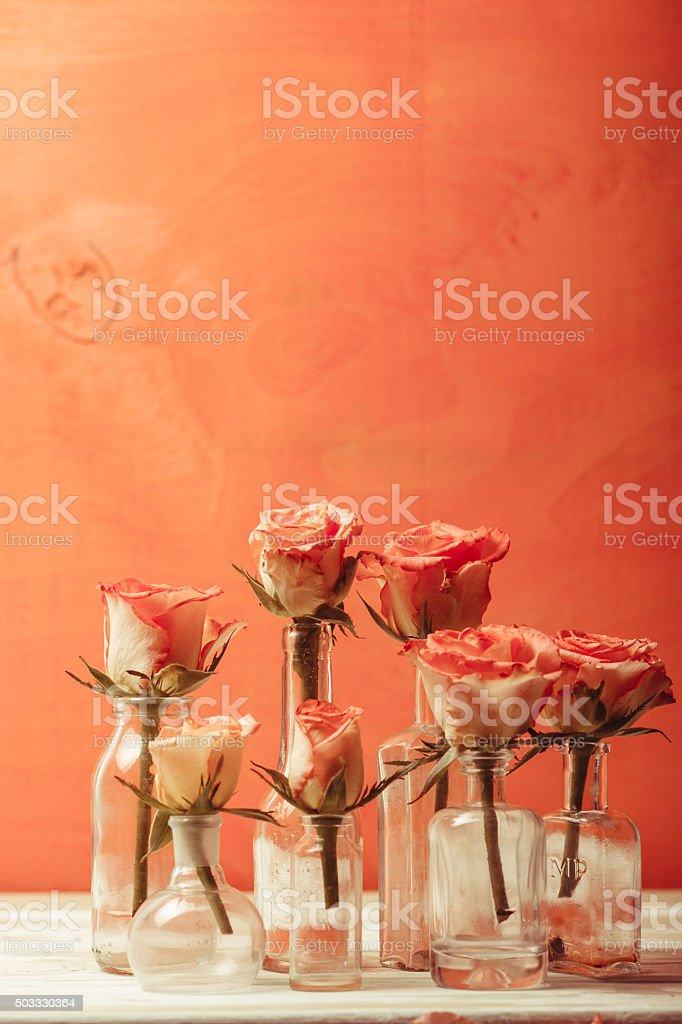 Roses in bottles stock photo