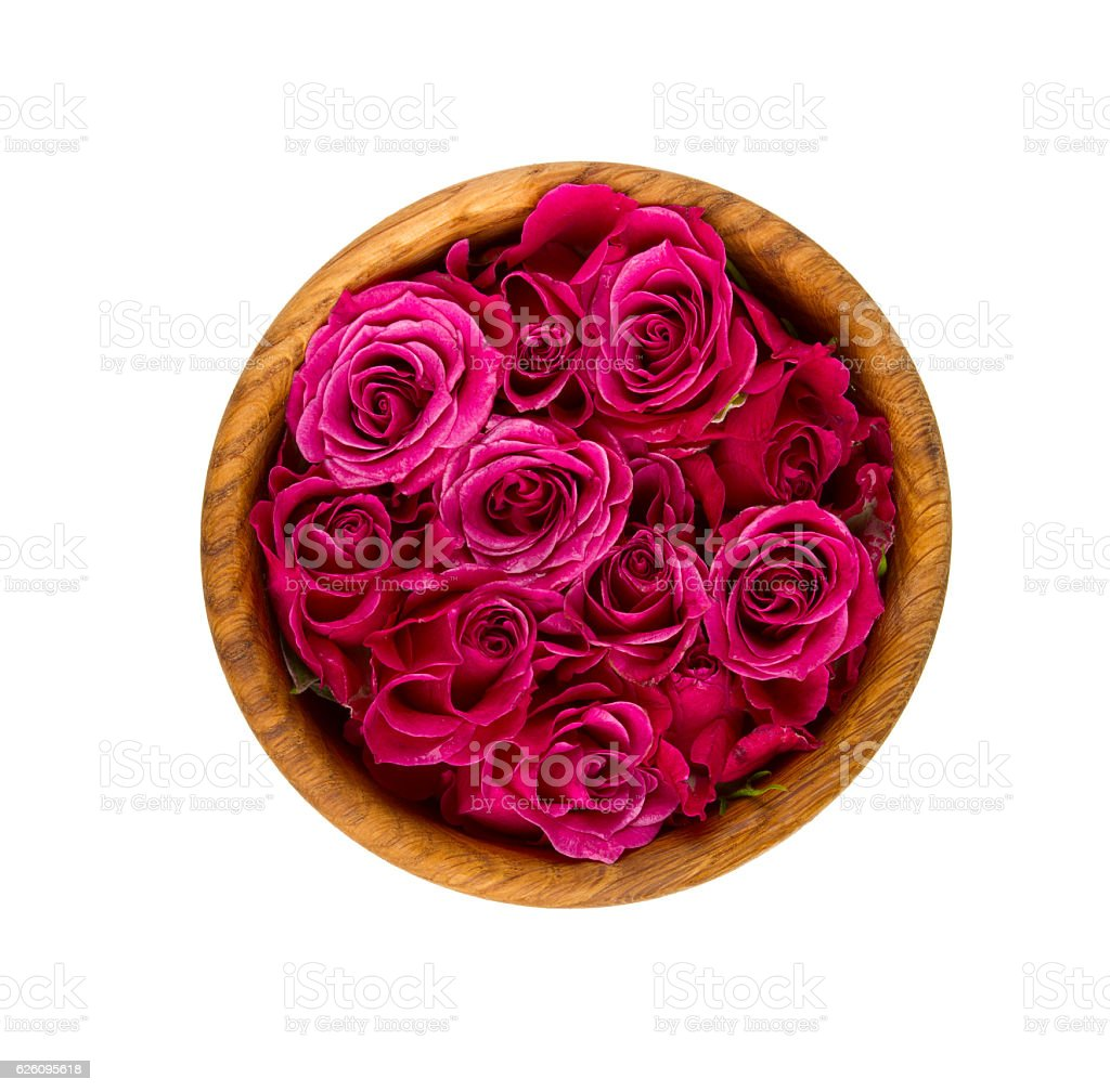 roses in wooden bowl isolated on white stock photo
