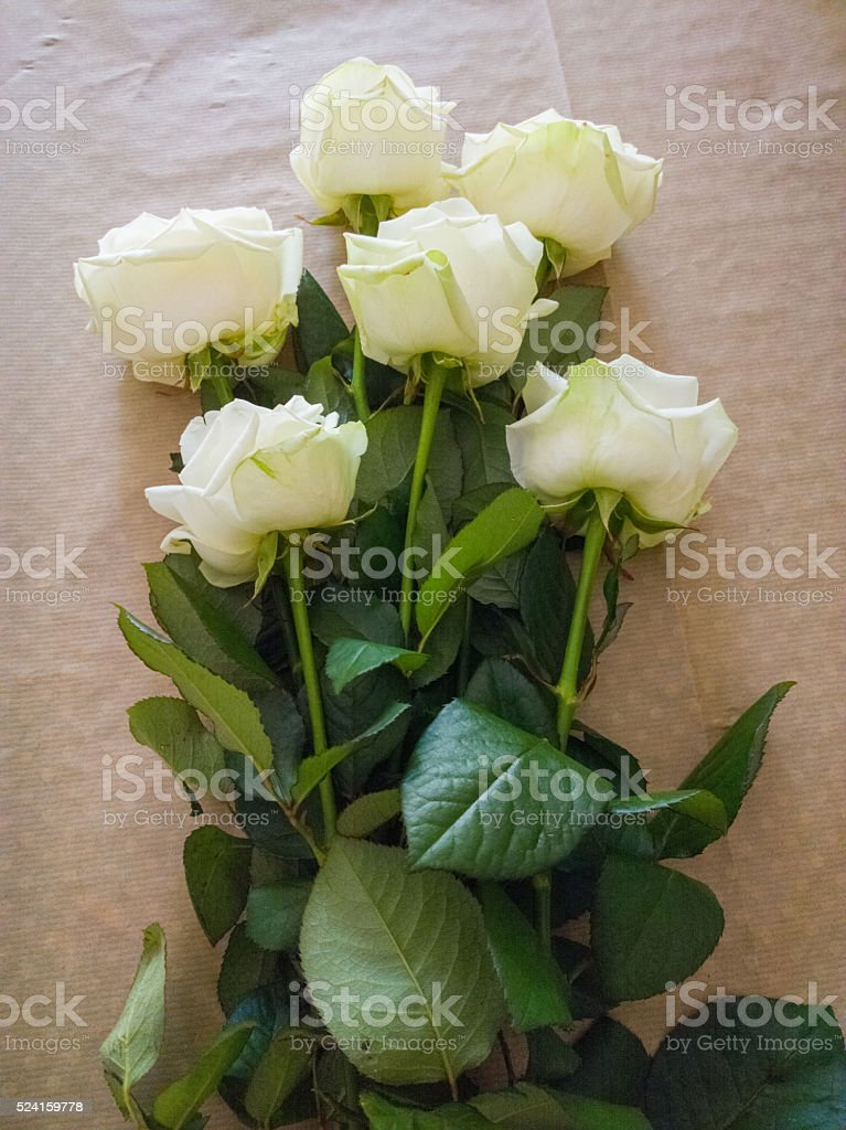 Roses on the table. stock photo