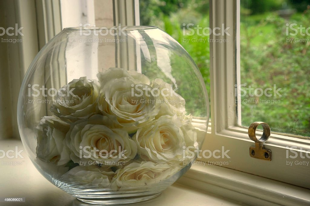 roses on windowsill stock photo
