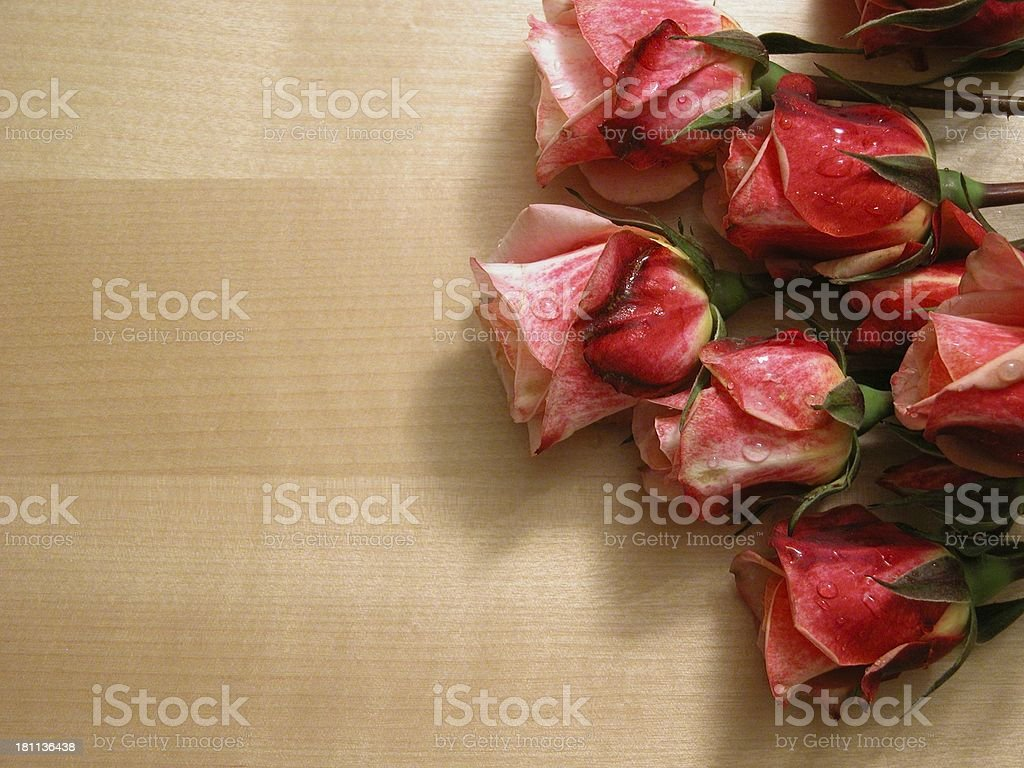 roses on wood stock photo