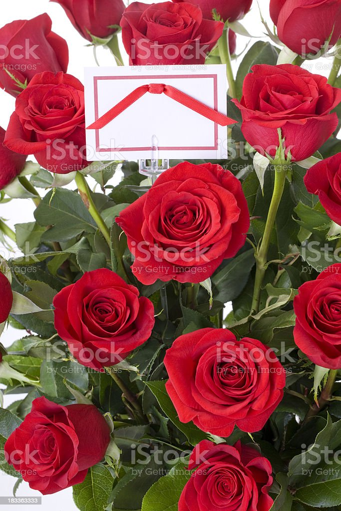 Roses with Card royalty-free stock photo