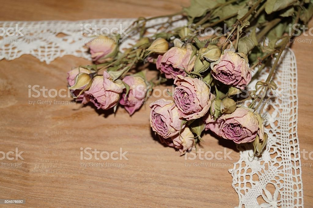 Roses wither and lace stock photo
