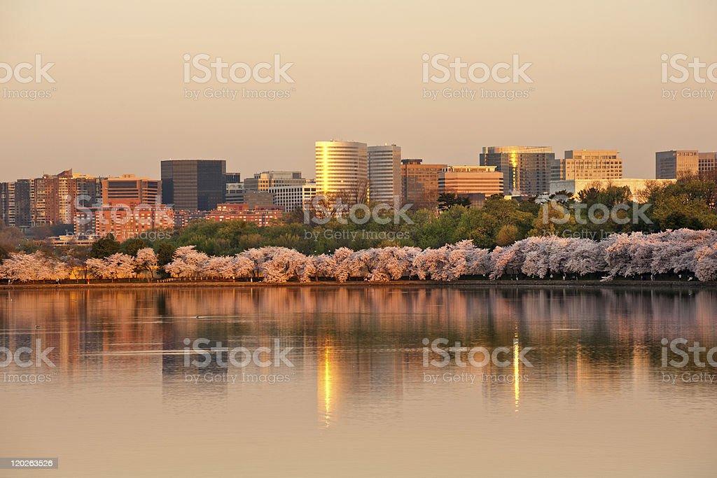 Rosslyn, VA stock photo