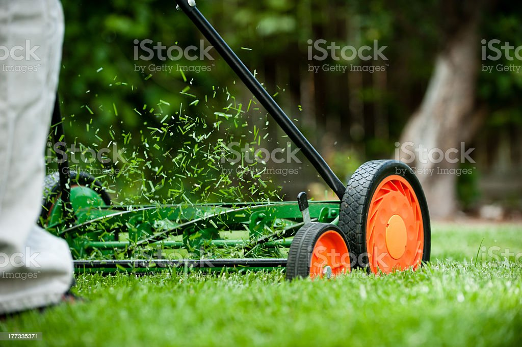 Rotary push mower with orange wheels cutting the grass royalty-free stock photo