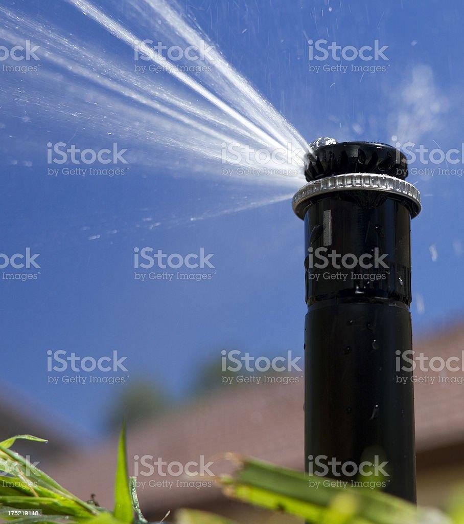 MP Rotator Sprinkler Right Vertical stock photo
