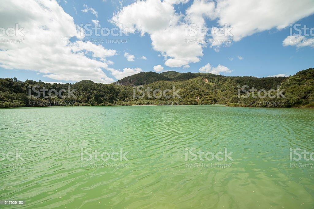 Rotowhero lake (Green lake), Rotorua, New Zealand stock photo