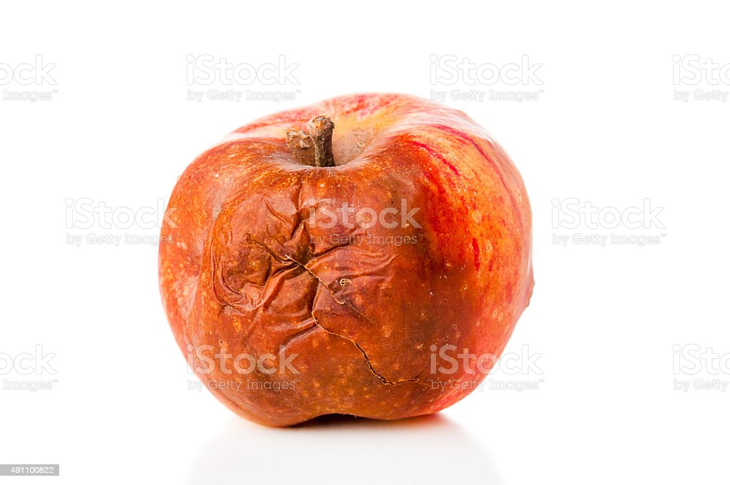 Rotten apple closeup on white background stock photo