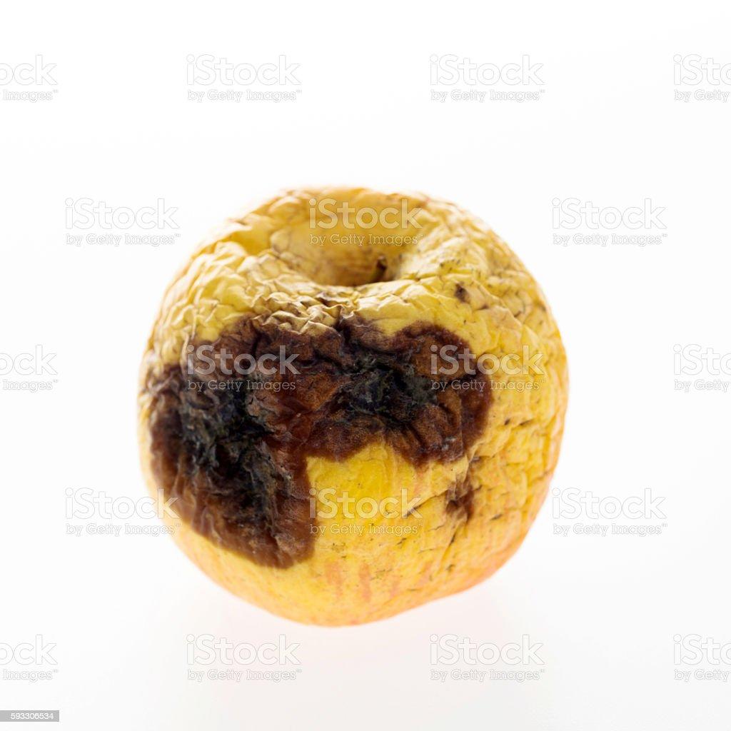 Rotten apple isolated on white background stock photo