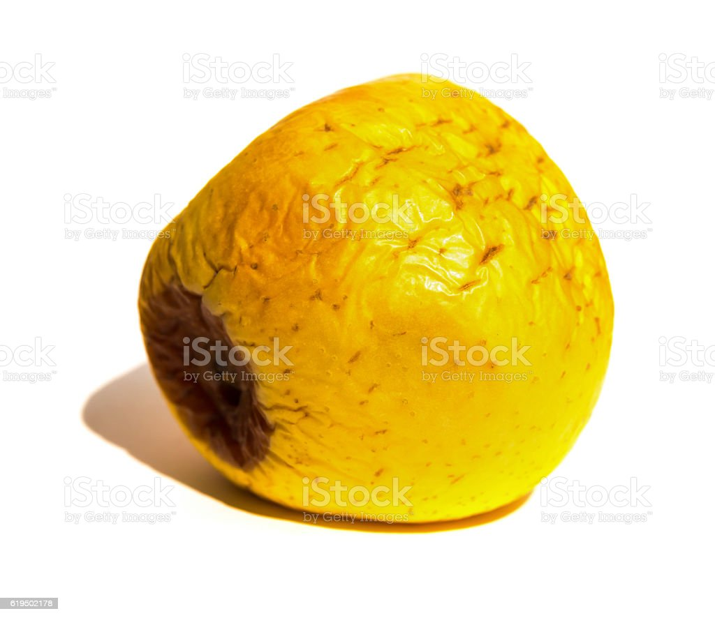 rotten apple on white background close up stock photo