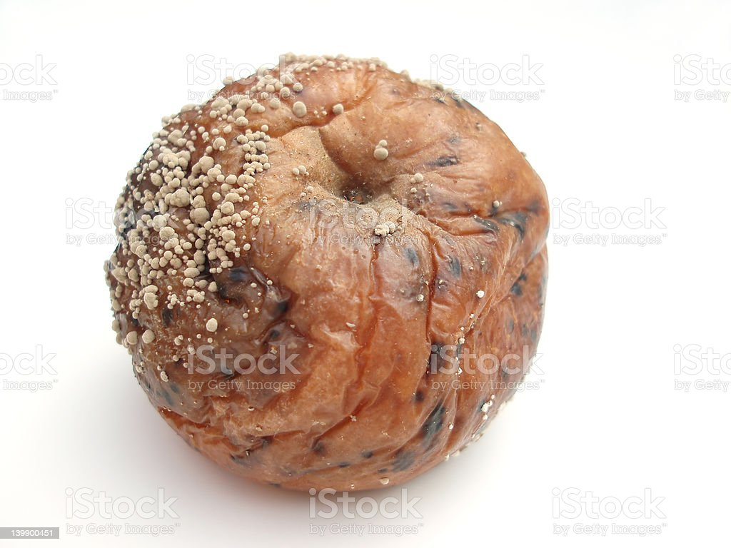 Rotten apple royalty-free stock photo