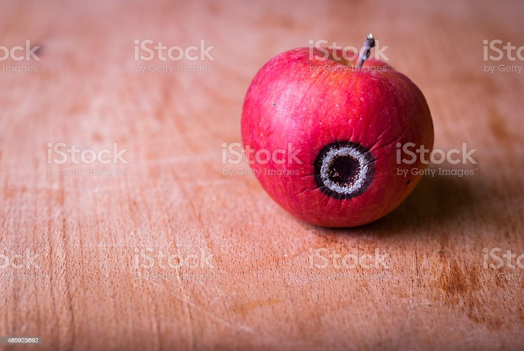 Rotten Apple stock photo