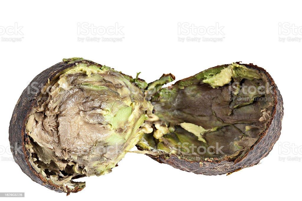 Rotten Avocado royalty-free stock photo