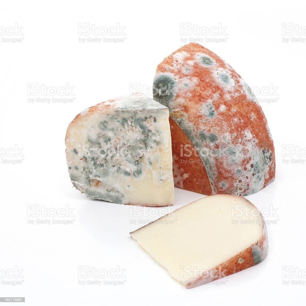 rotten cheese stock photo
