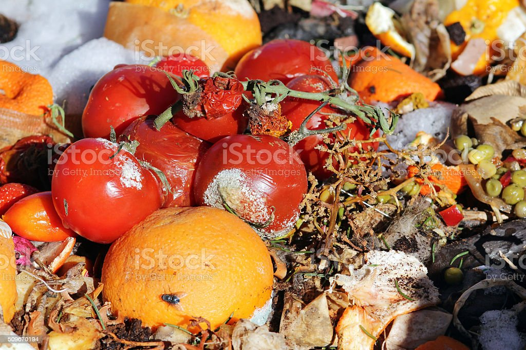 Rotten fruit and vegetables on a garbage heap stock photo