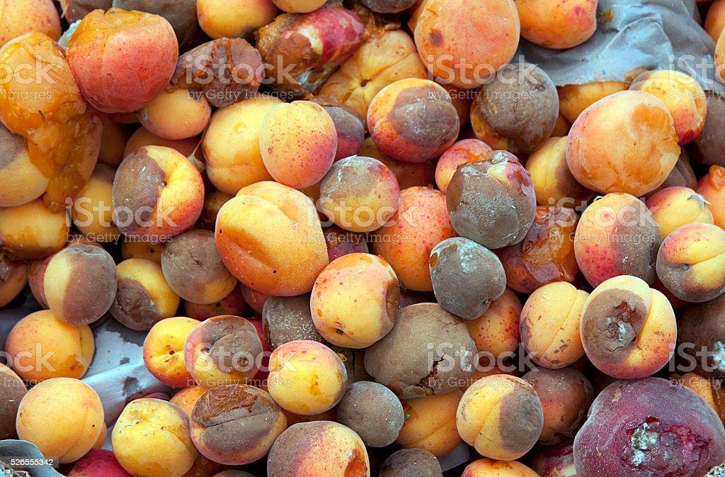 Rotten fruit stock photo