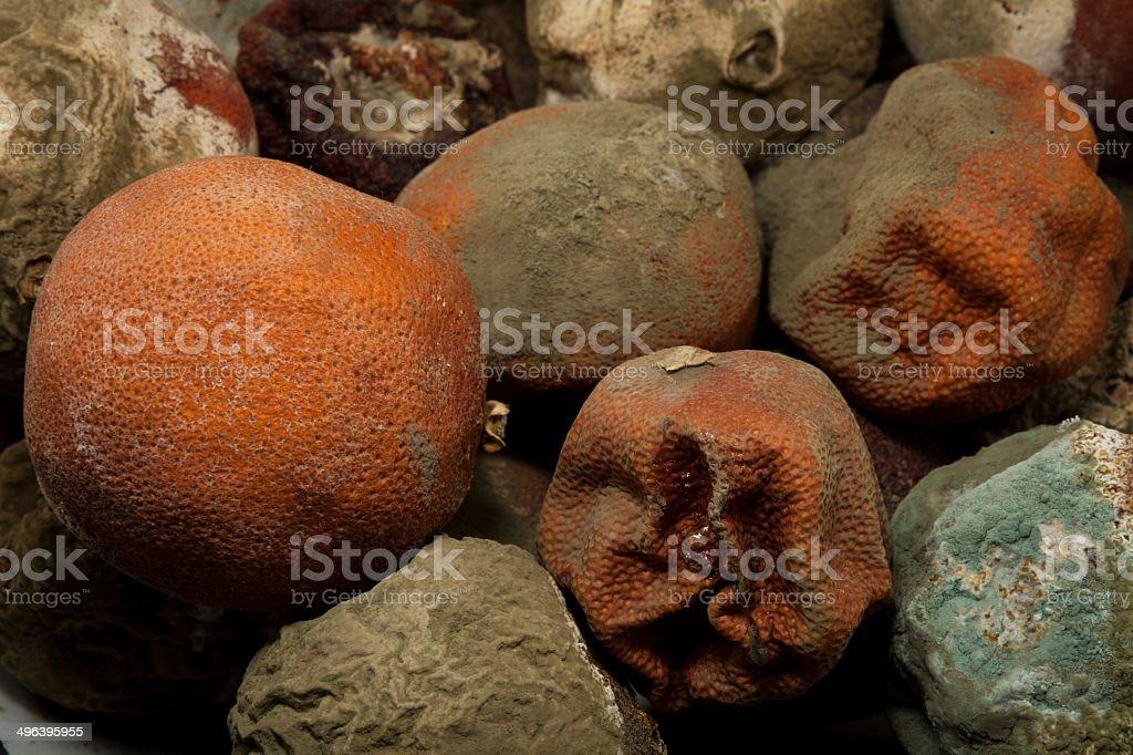 Rotten Fruits royalty-free stock photo