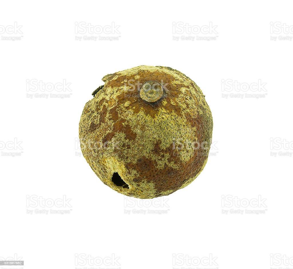 rotten Lemon fruit isolated on white background stock photo
