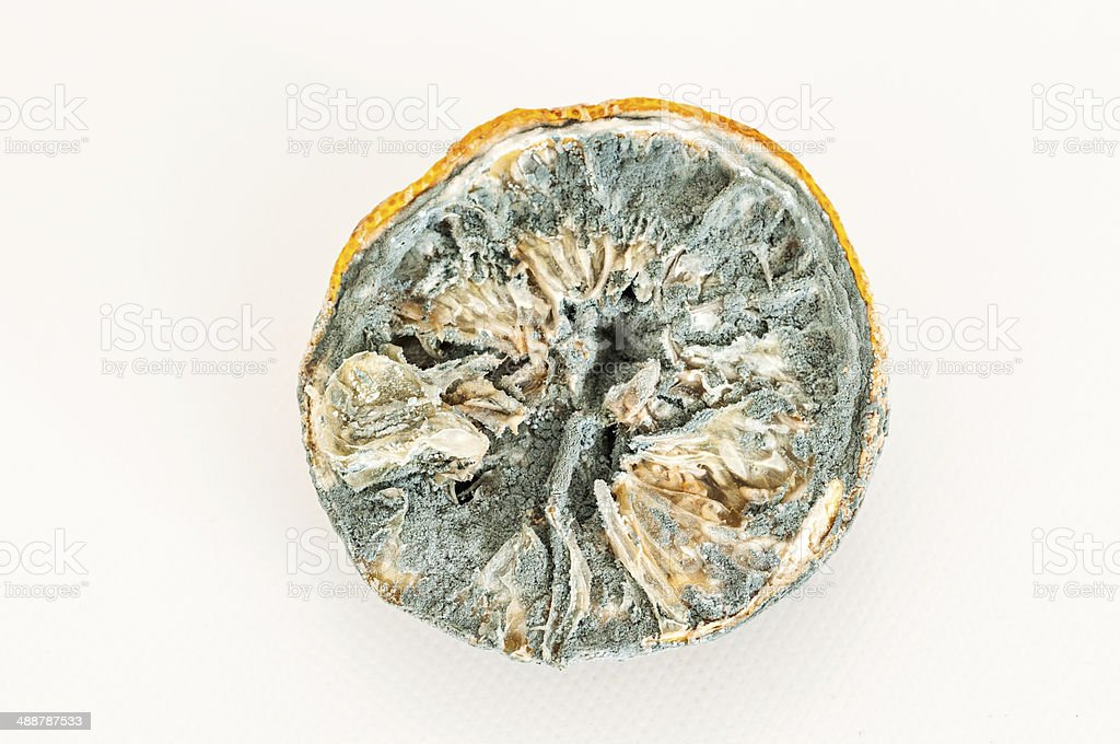 rotten lemon royalty-free stock photo