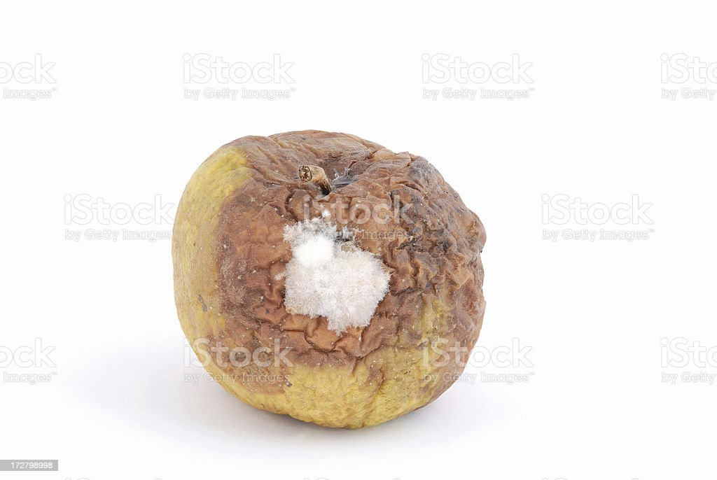 rotten moldy apple royalty-free stock photo
