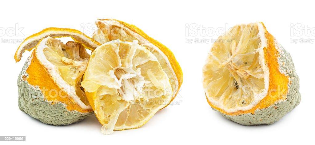 Rotten moldy lemon isolated on white stock photo