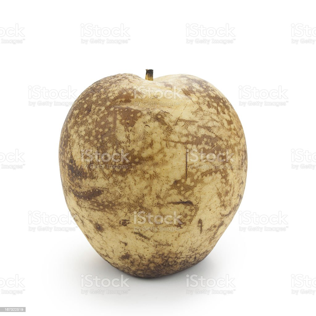 Rotten pear royalty-free stock photo