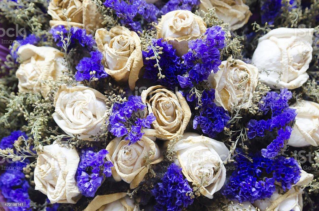 rotten roses royalty-free stock photo