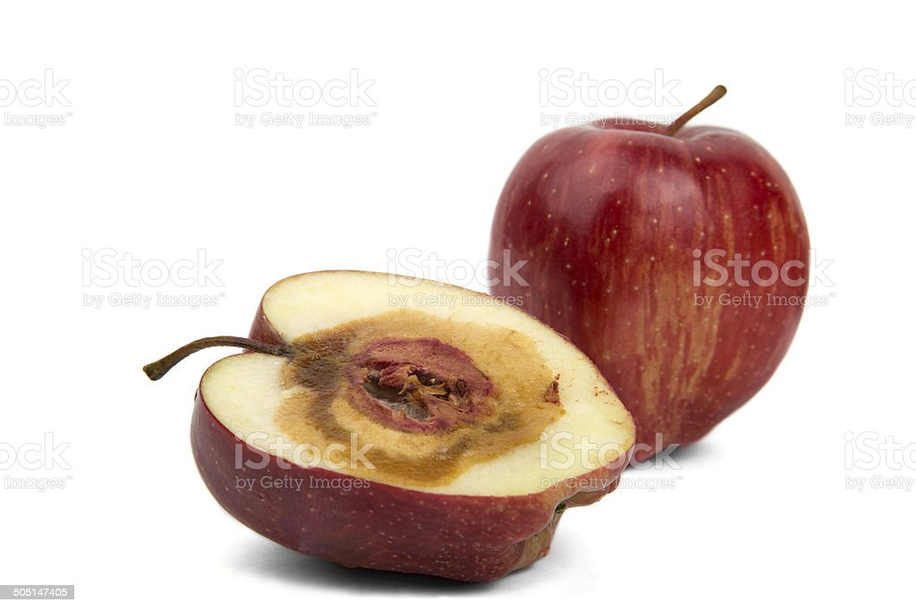 rotten sliced red apple on a white background stock photo