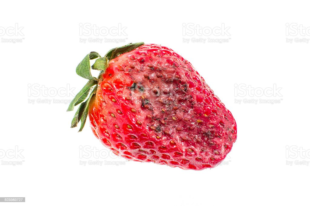 Rotten Strawberries Rotten Strawberry stoc...