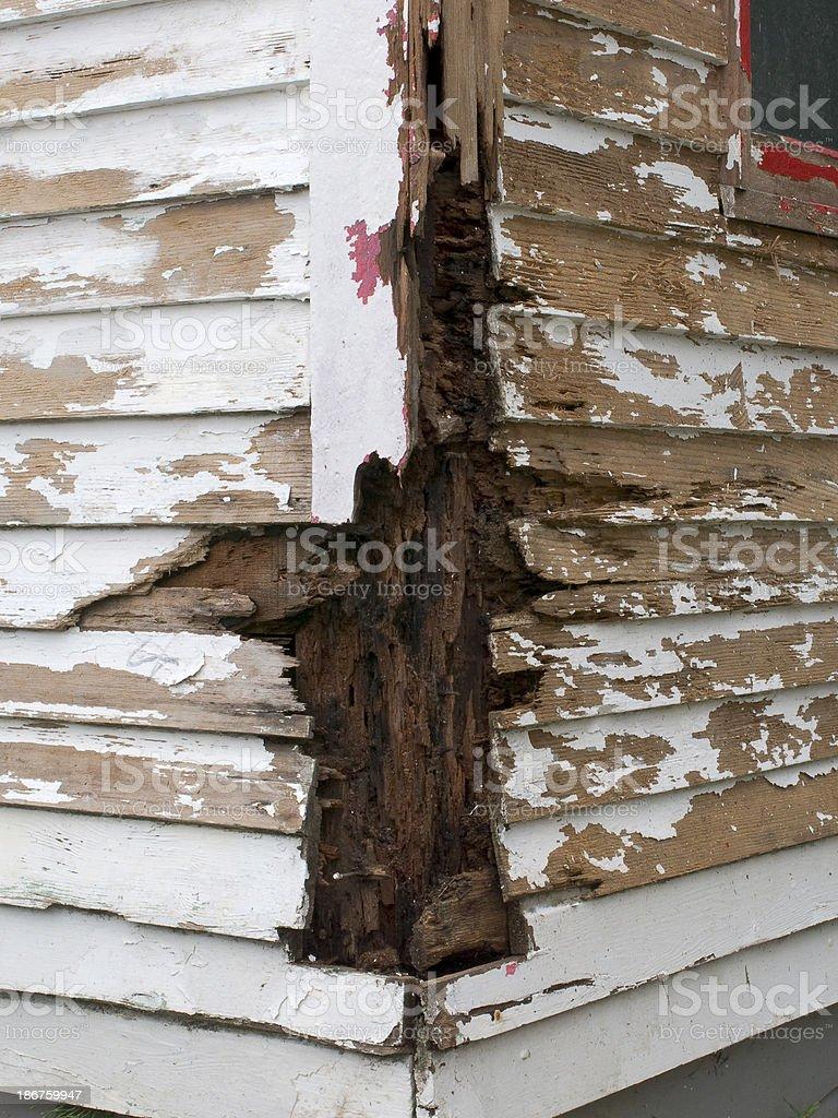 Rotten Wood stock photo