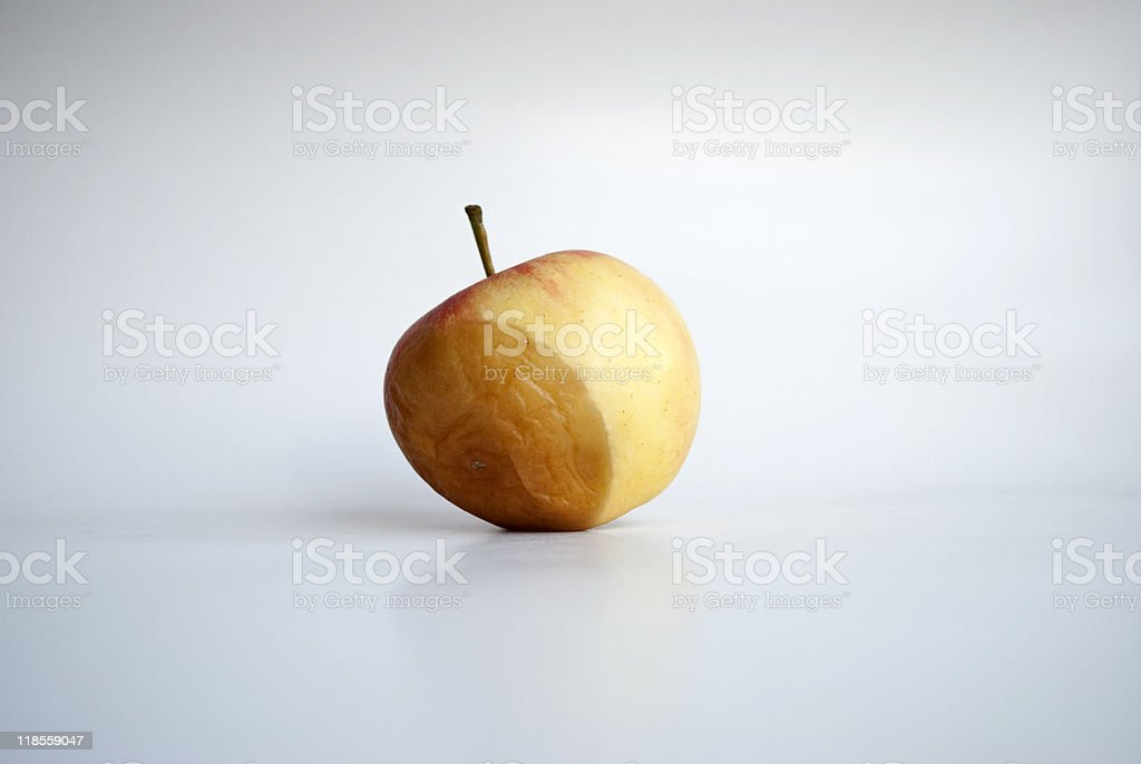 Rotting apple stock photo